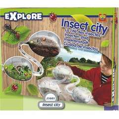 Explore - Insect City